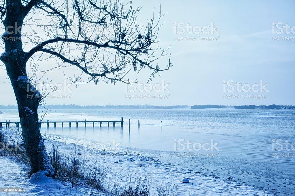 Frozen Fjord stock photo