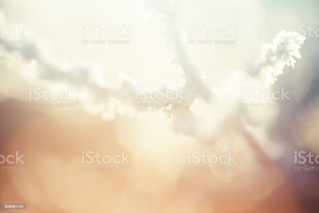 Frozen grass abstraction stock photo