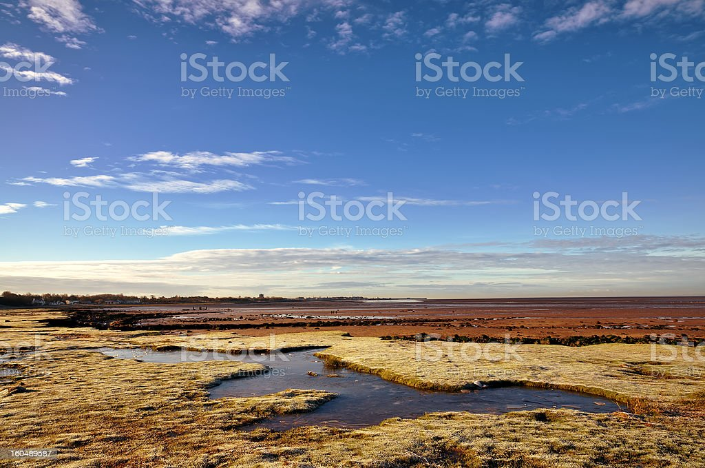 Frozen grass on Morecambe Bay in Winter. royalty-free stock photo