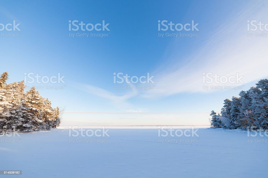 Frozen lake and snow covered forest stock photo