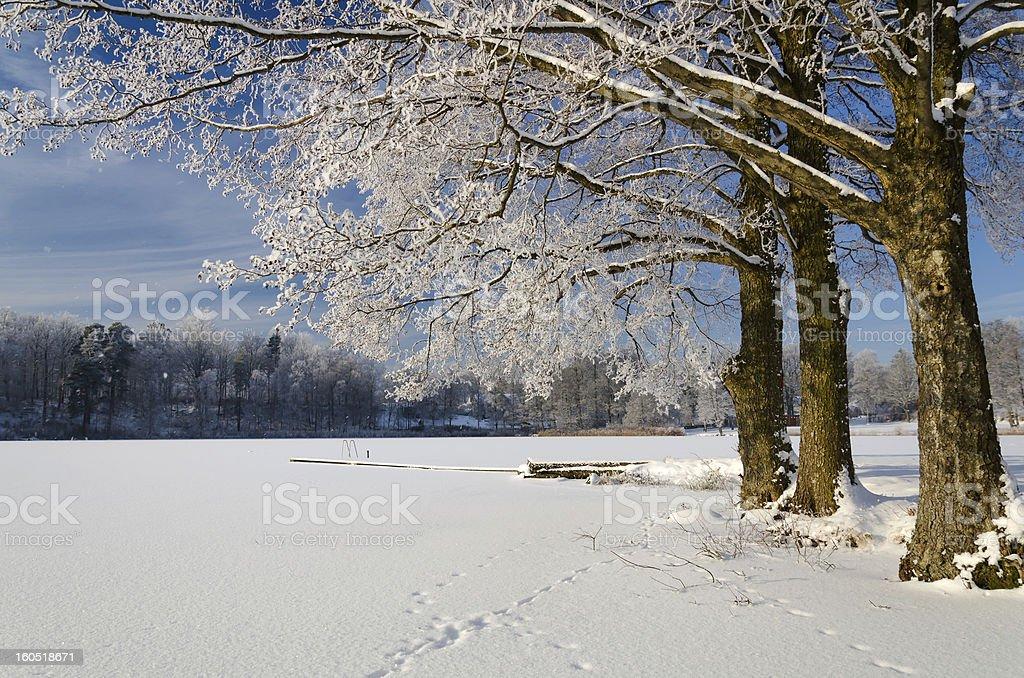 Frozen lake details royalty-free stock photo