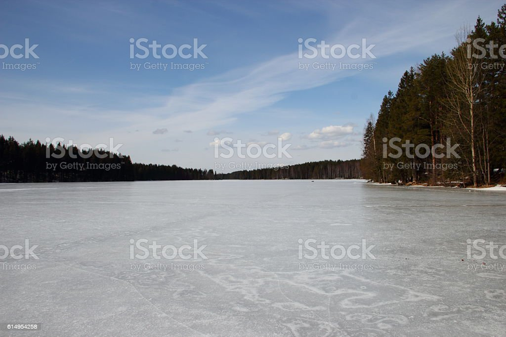 frozen lake in the forest stock photo