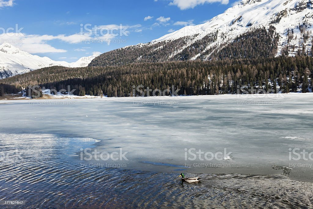 frozen lake royalty-free stock photo