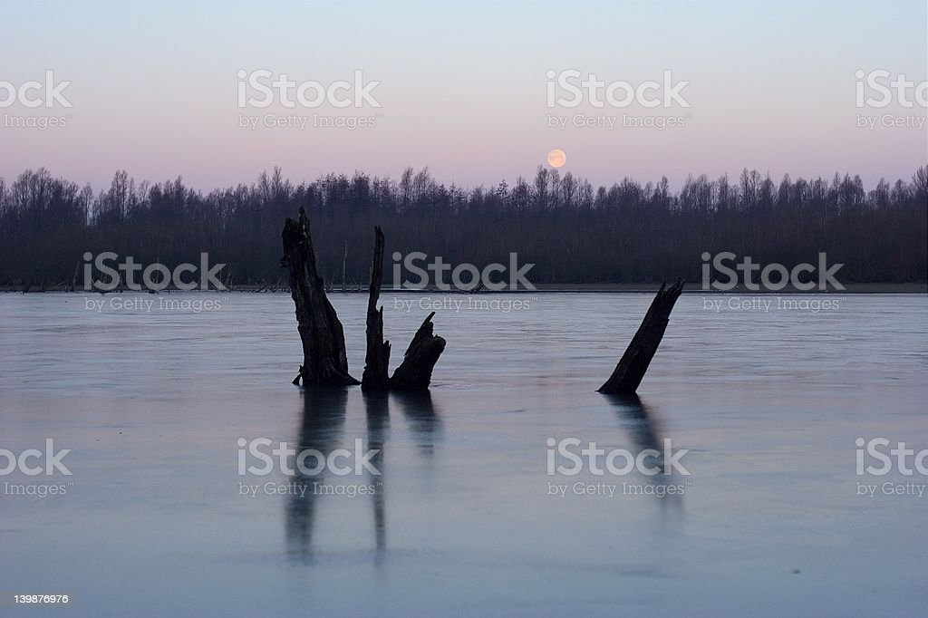 Frozen lake with moon royalty-free stock photo