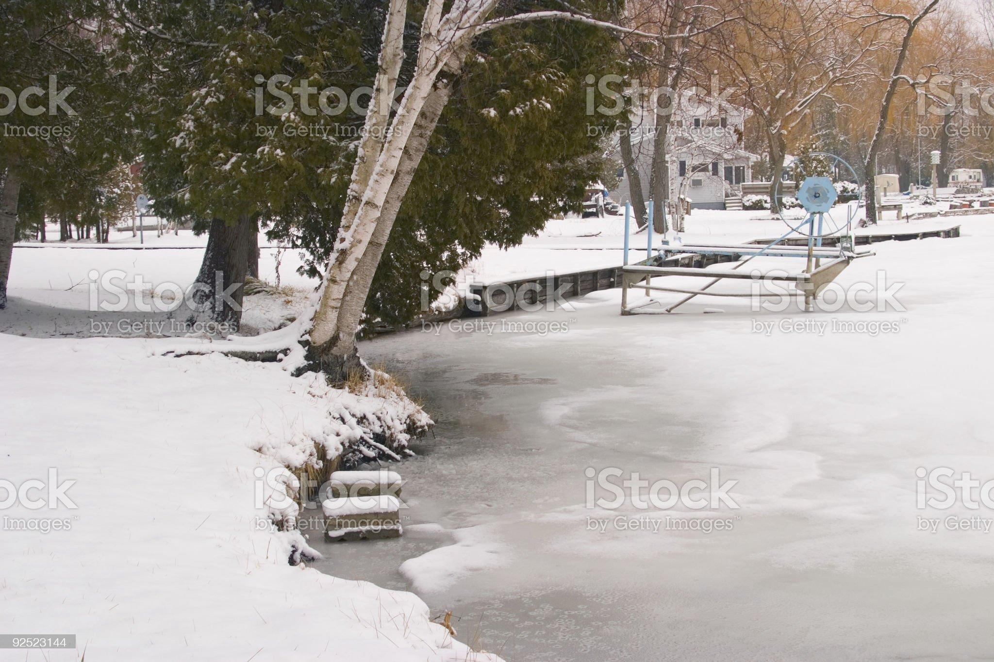 Frozen Lakeshore royalty-free stock photo
