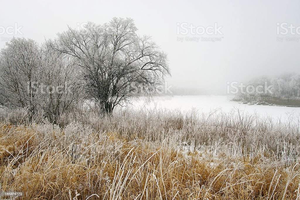Frozen Landscape royalty-free stock photo