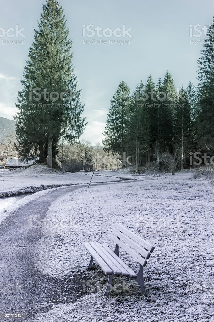 Frozen path and bench stock photo