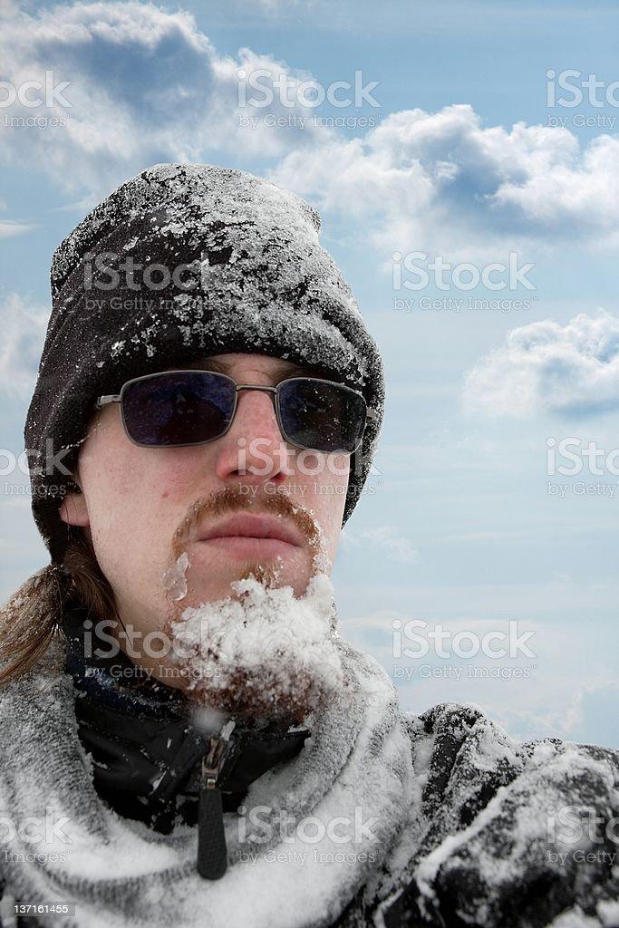 Frozen royalty-free stock photo