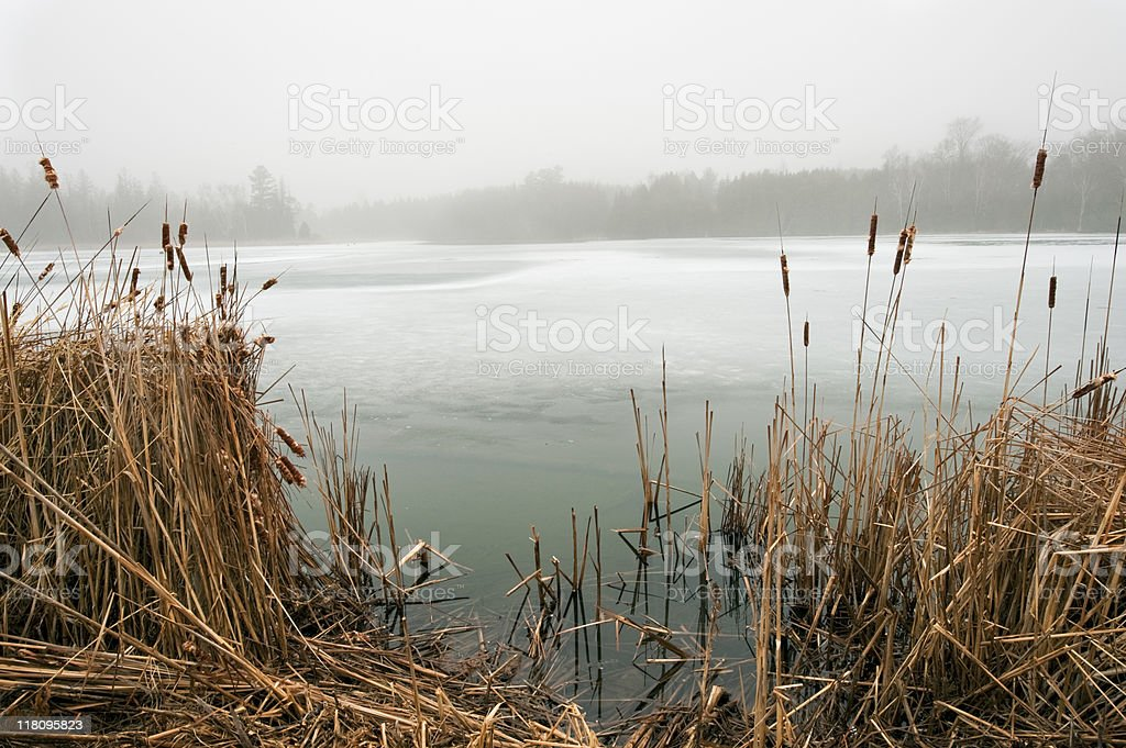 Frozen Pond stock photo