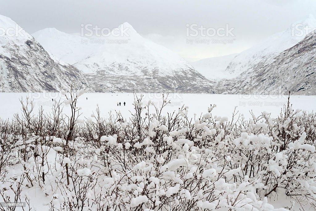 Frozen Portage Lake in Alaska stock photo