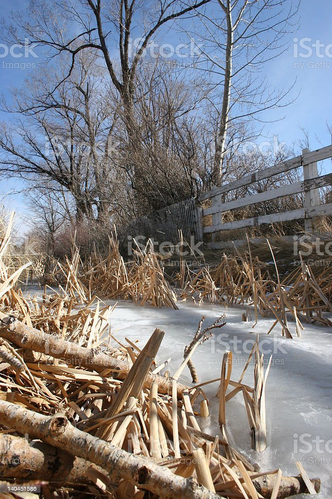 frozen river and fence royalty-free stock photo