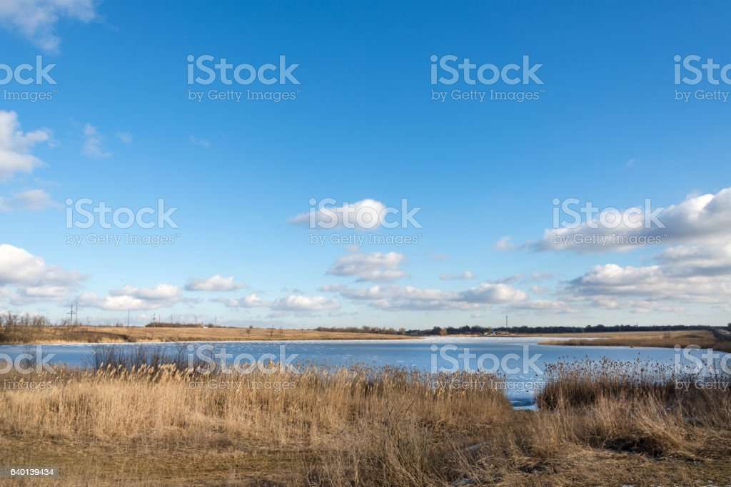 Frozen river with reeds on the beach stock photo
