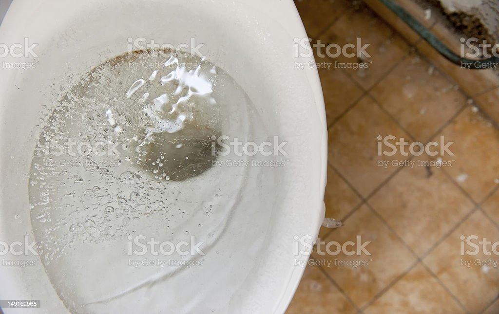 Frozen toilet bowl royalty-free stock photo