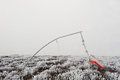 Frozen vane. Indicator of wind direction