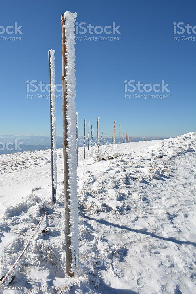Frozen wooden pillars, vertical orientation stock photo