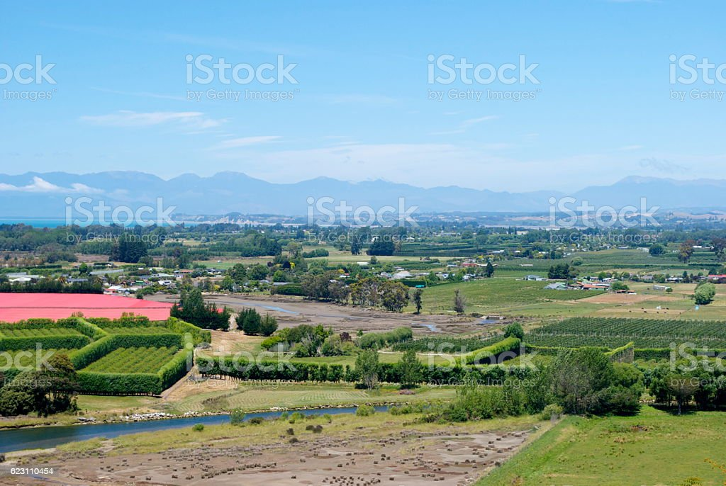 Fruit Growing Region, New Zealand stock photo
