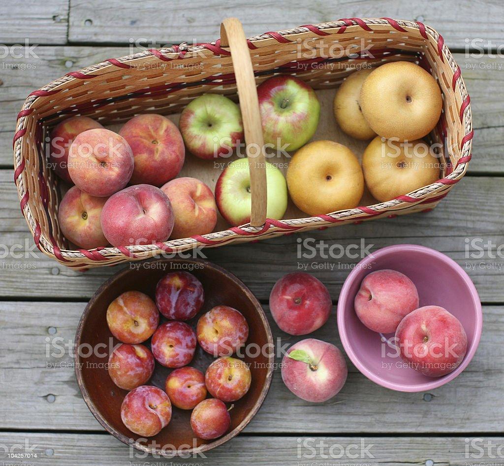 Fruit Harvest stock photo