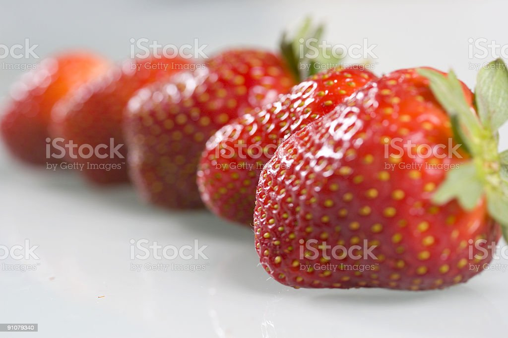 Fruit in a line royalty-free stock photo