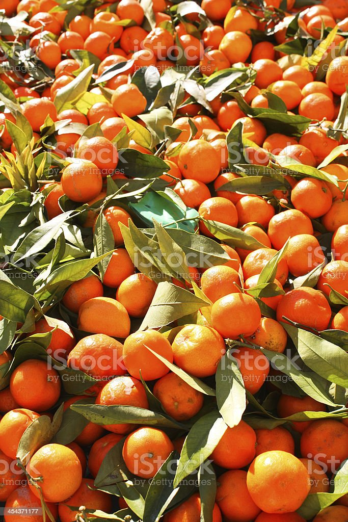 Fruit orange closeup stock photo