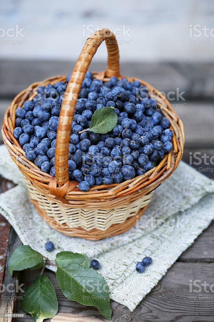 fruit Prunus in the basket stock photo
