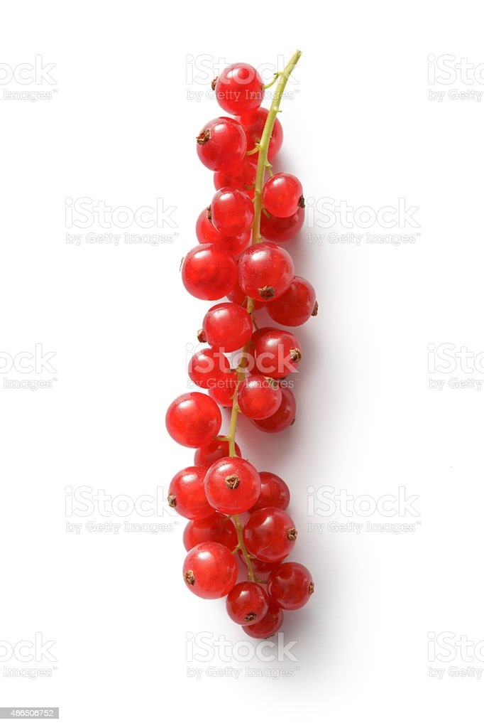 Fruit: Red Currant stock photo