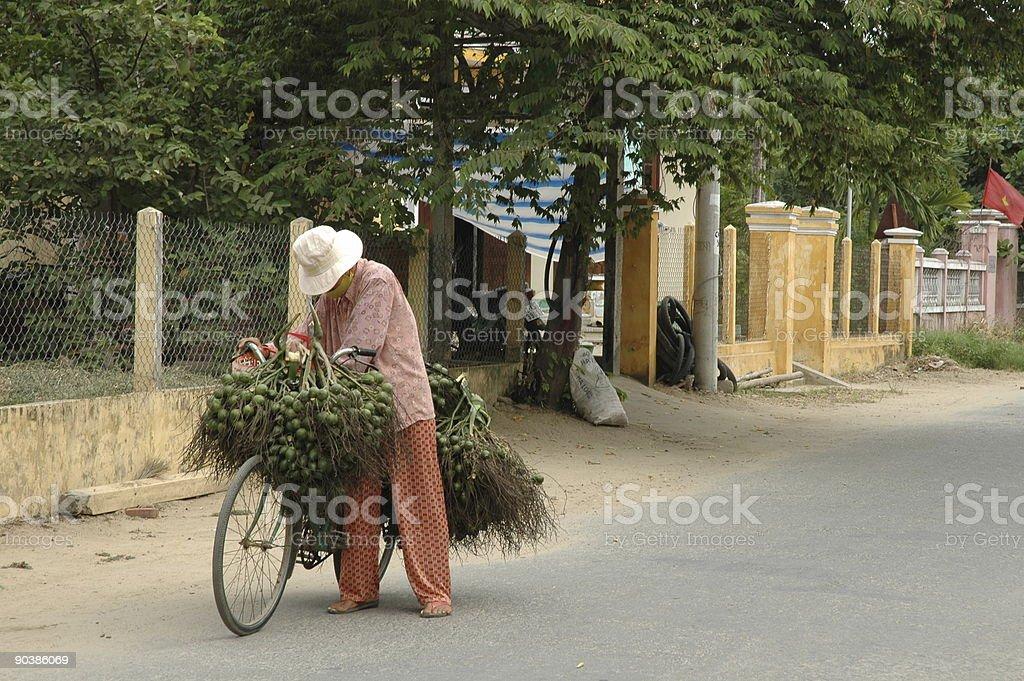 Fruit seller in Moi Ne stock photo
