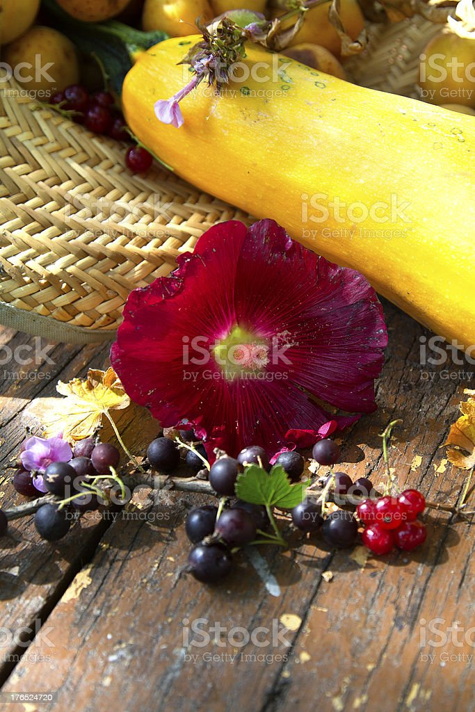 Fruits and flowers royalty-free stock photo
