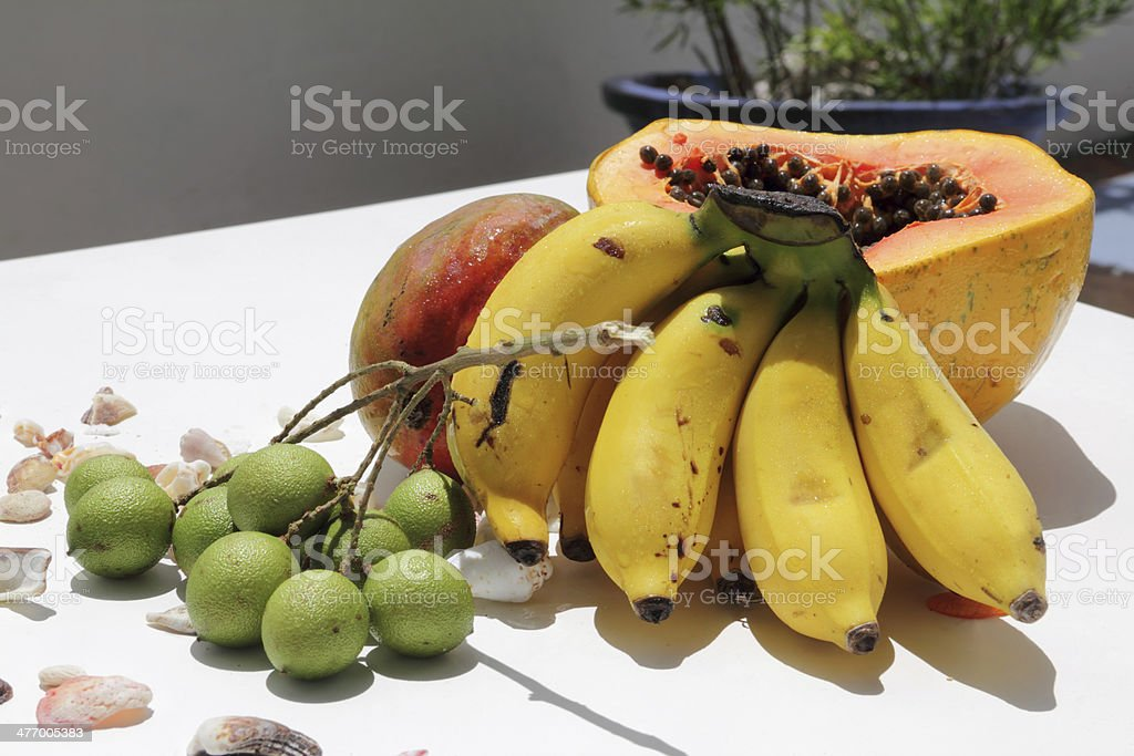 fruits and shells stock photo