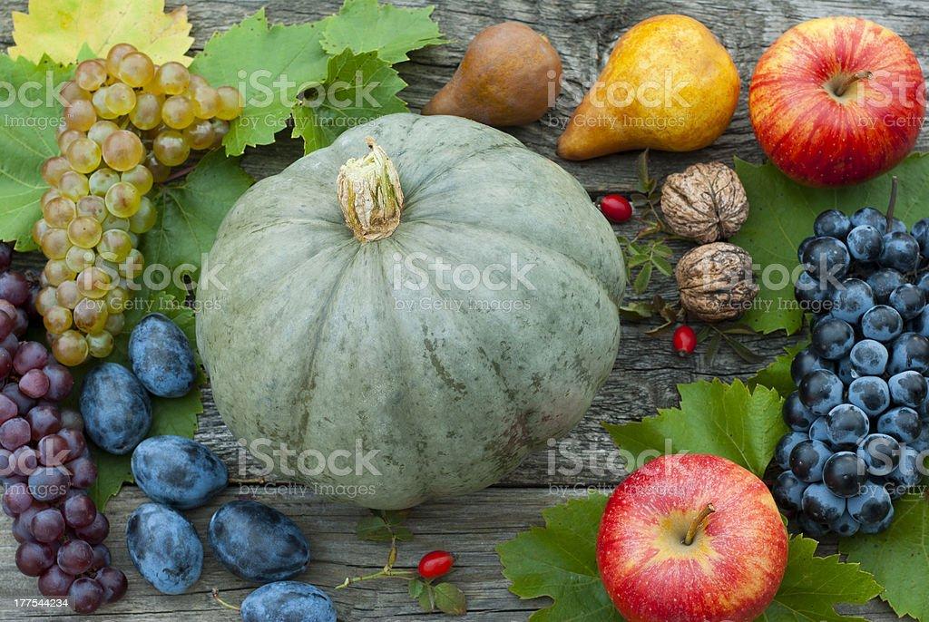 Fruits, autumnal still life stock photo