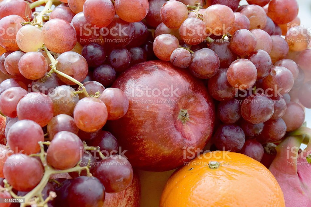 Fruits collection. stock photo