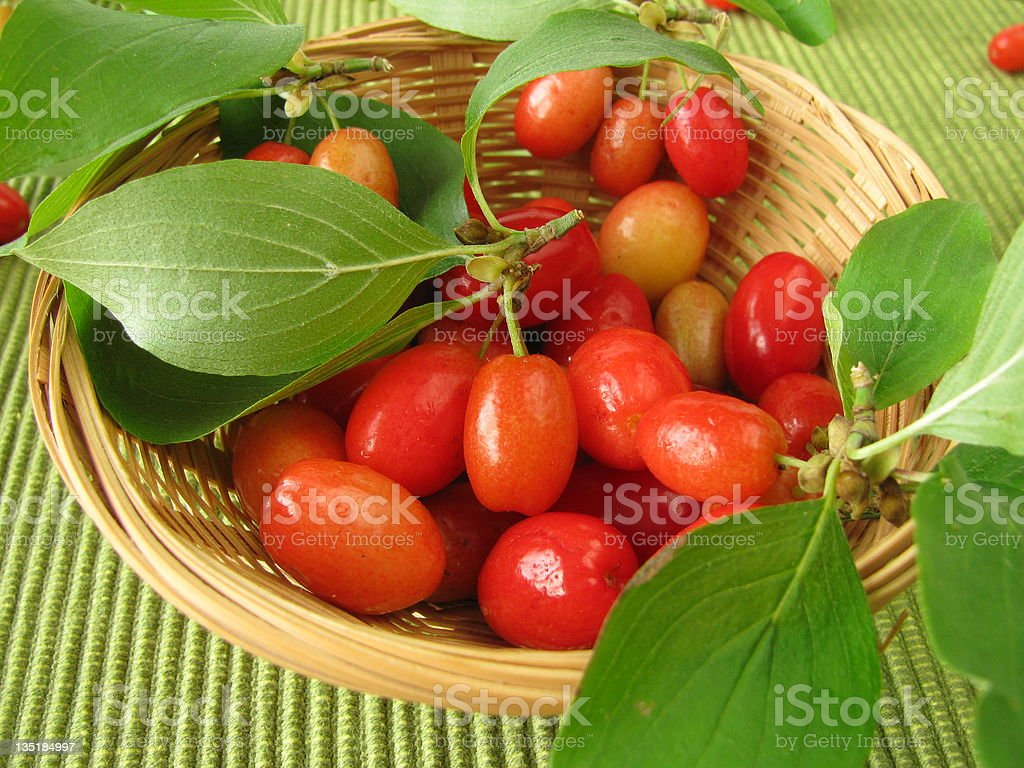 Fruits of cornel in basket royalty-free stock photo