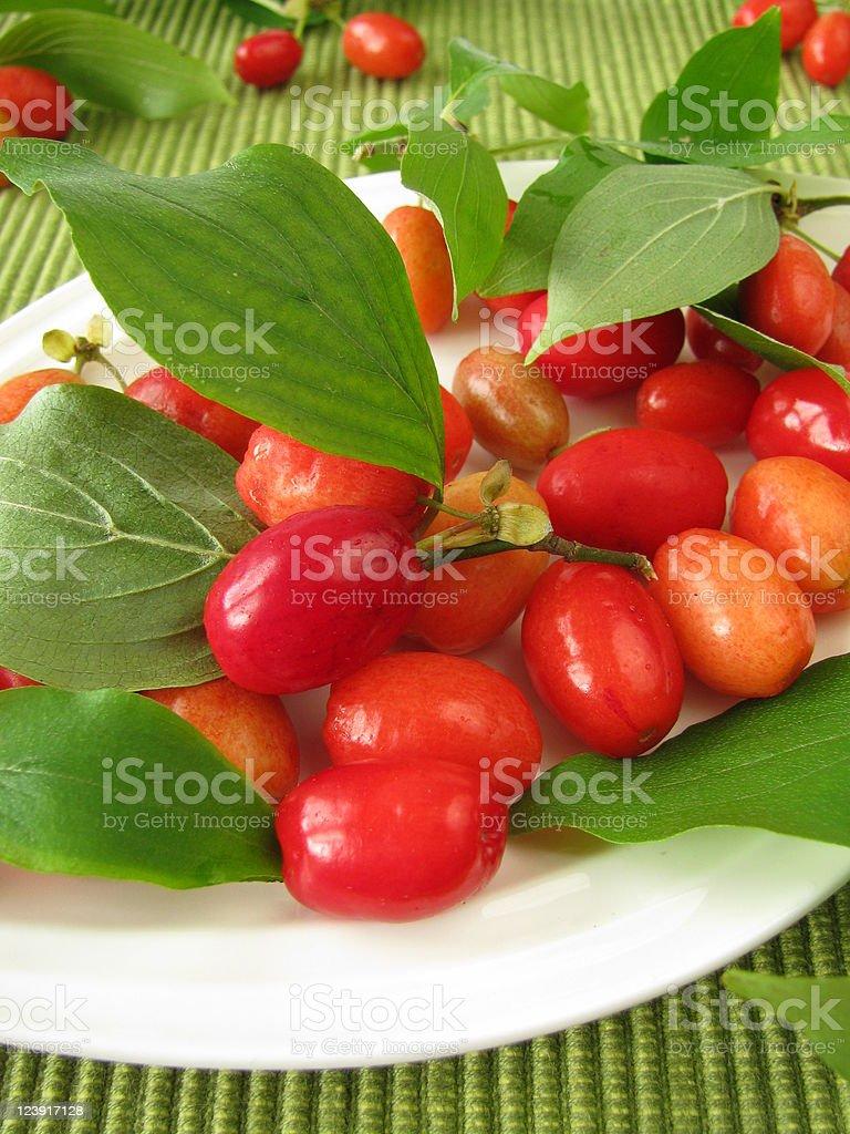 Fruits of cornel royalty-free stock photo