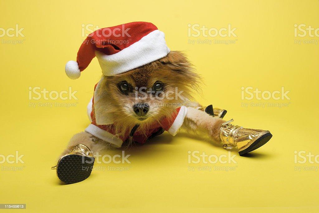 Frumpy Claus stock photo