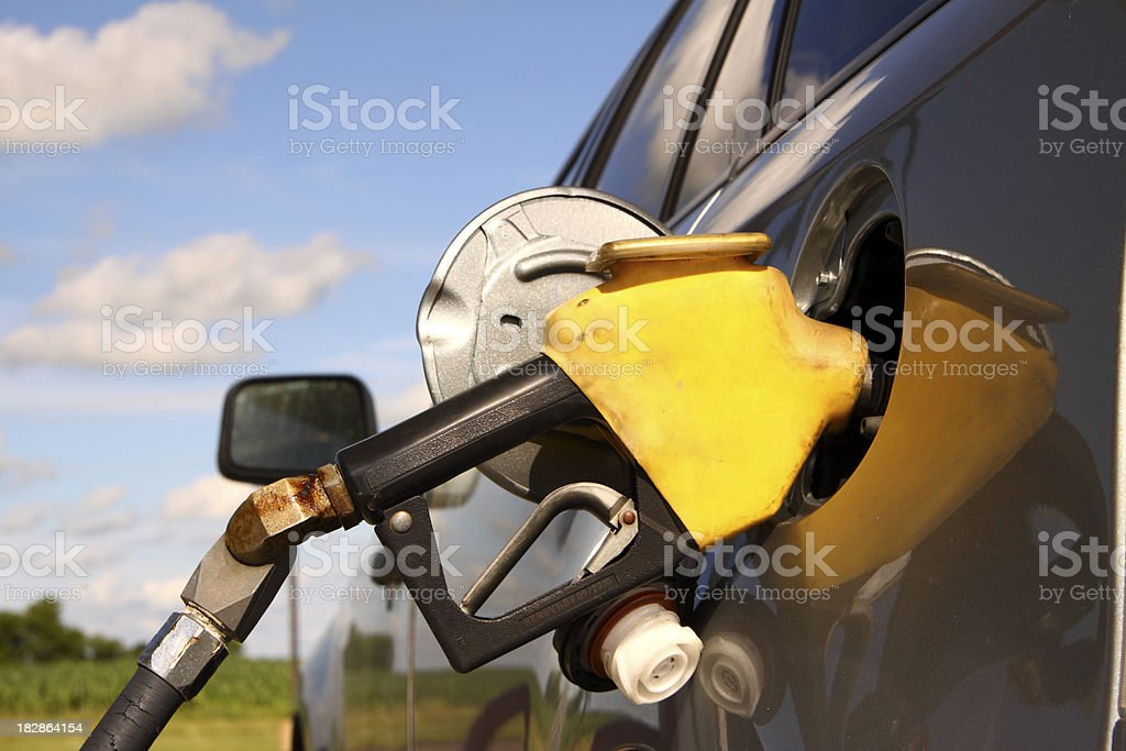 Fuel and Environment royalty-free stock photo