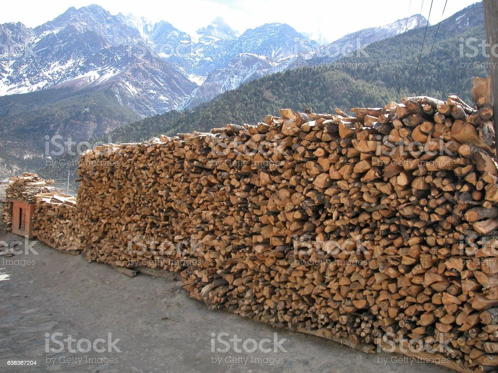 Fuel wood in rural Nepal stock photo
