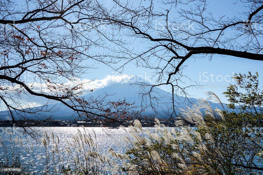 Fuji in Autumn stock photo