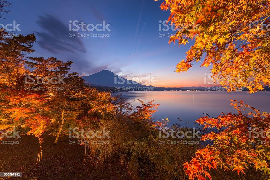 Fuji in Fall stock photo