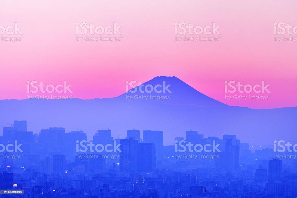 Fuji seen from Tokyo stock photo