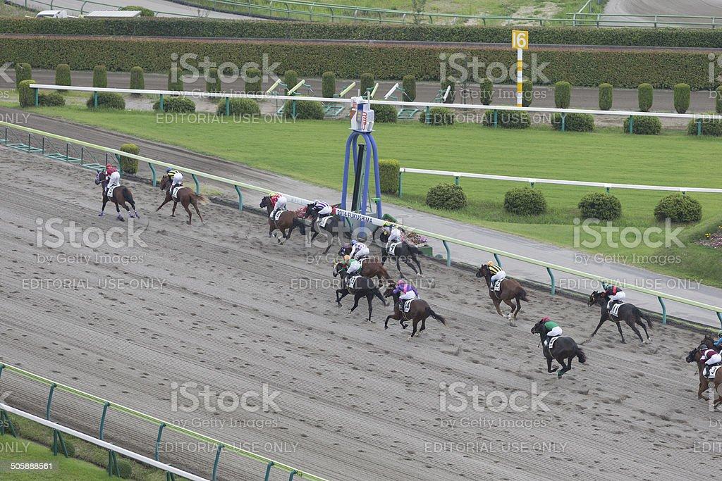 Fukushima Racecourse in Japan royalty-free stock photo