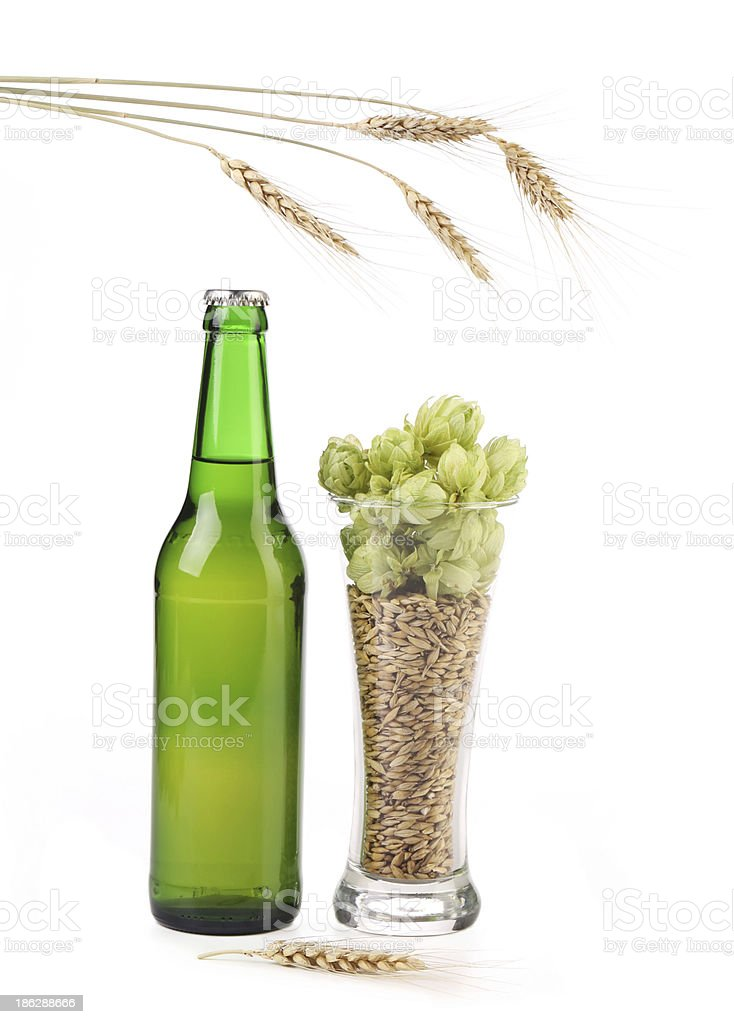 Full bottle and glass of beer. royalty-free stock photo