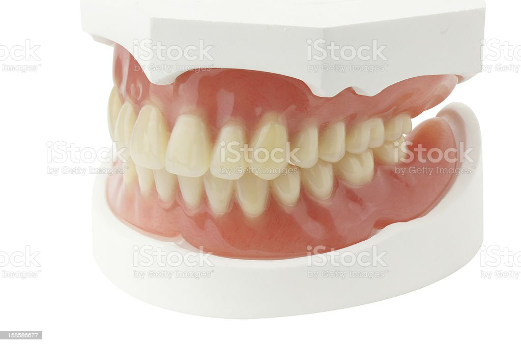 Full Denture stock photo