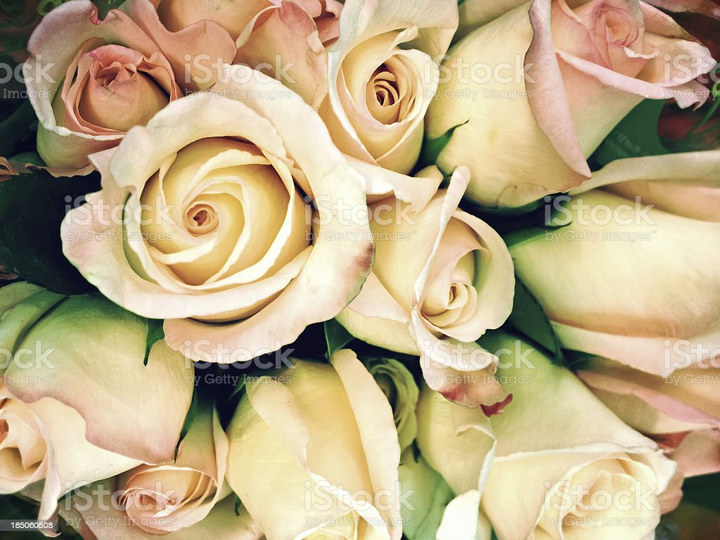Full frame cross processed rose bouquet vintage style royalty-free stock photo