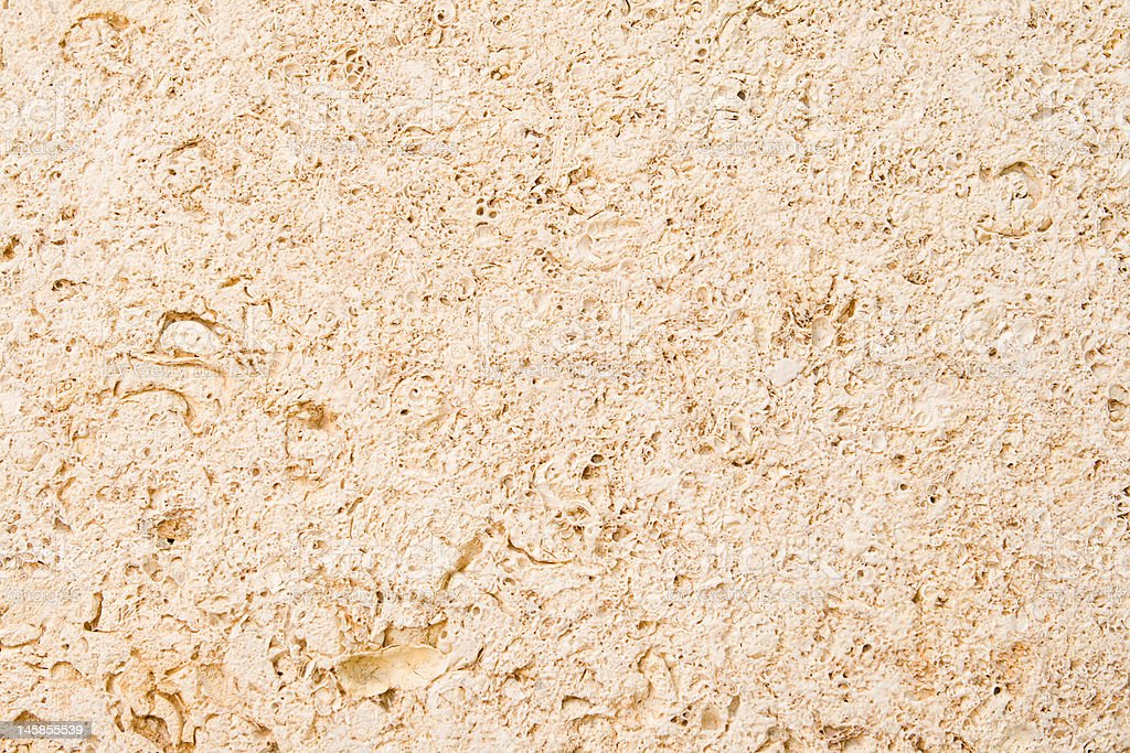 Full Frame Limestone with Embedded Fossils royalty-free stock photo