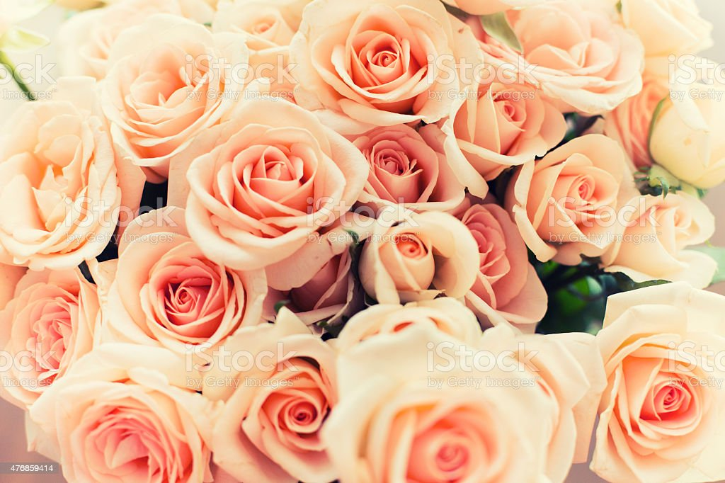 Full Frame Rose Bouquet stock photo