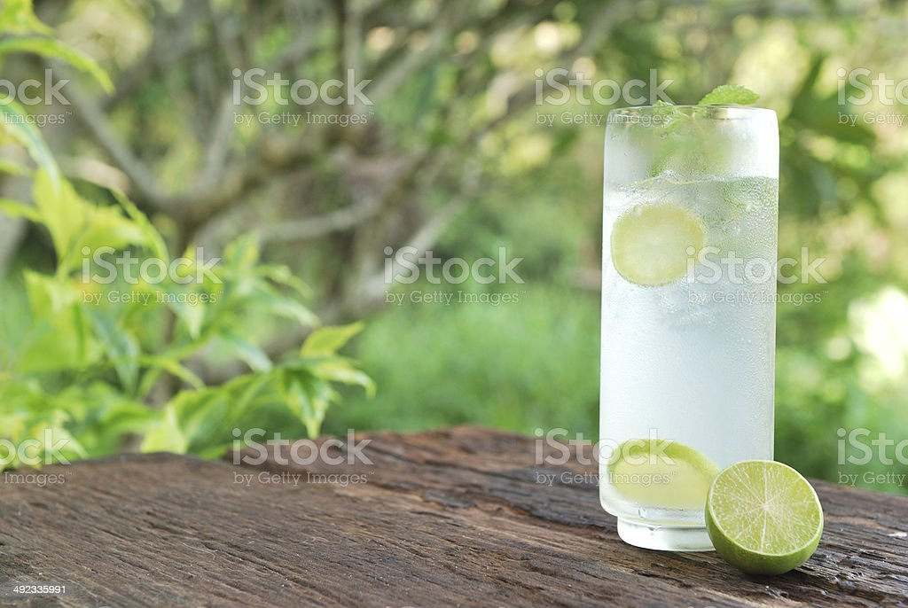 Full glass of fresh cool tonic with lime fruits stock photo