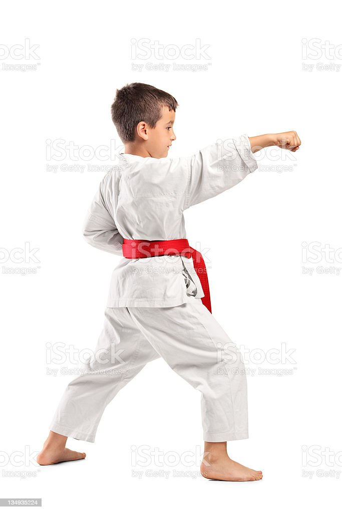 Full length portrait of a karate child royalty-free stock photo