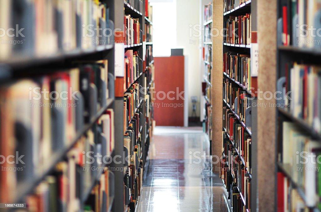 Full Library Aisle royalty-free stock photo