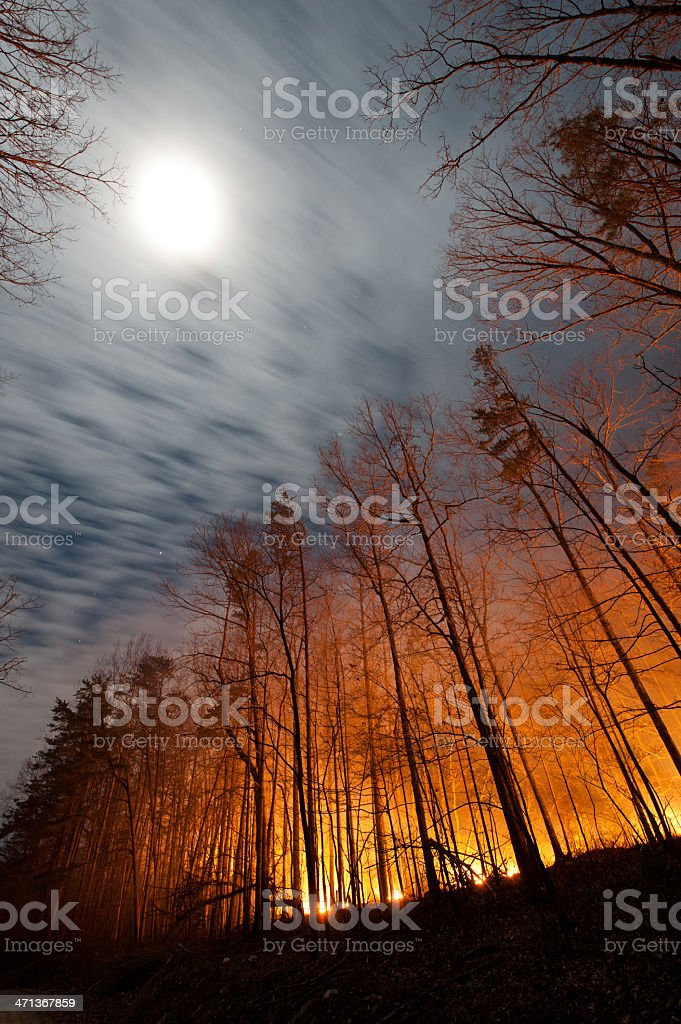 Full Moon and Forest Fire stock photo