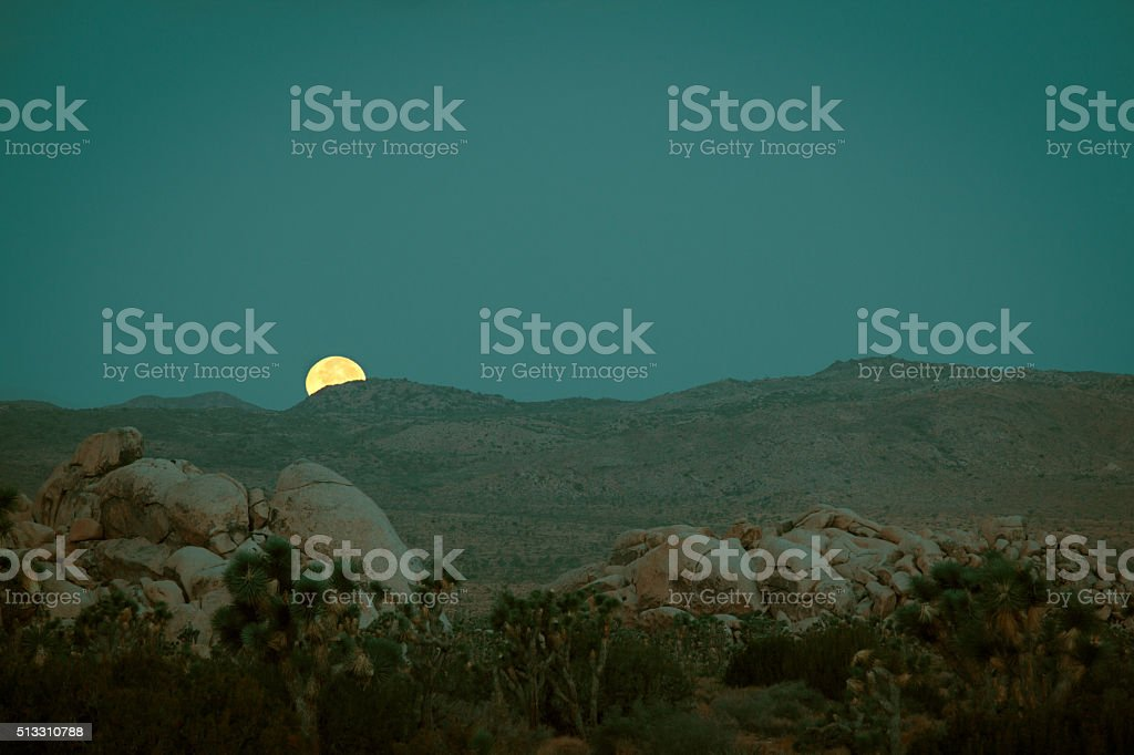Full Moon at Joshua Tree National Park stock photo