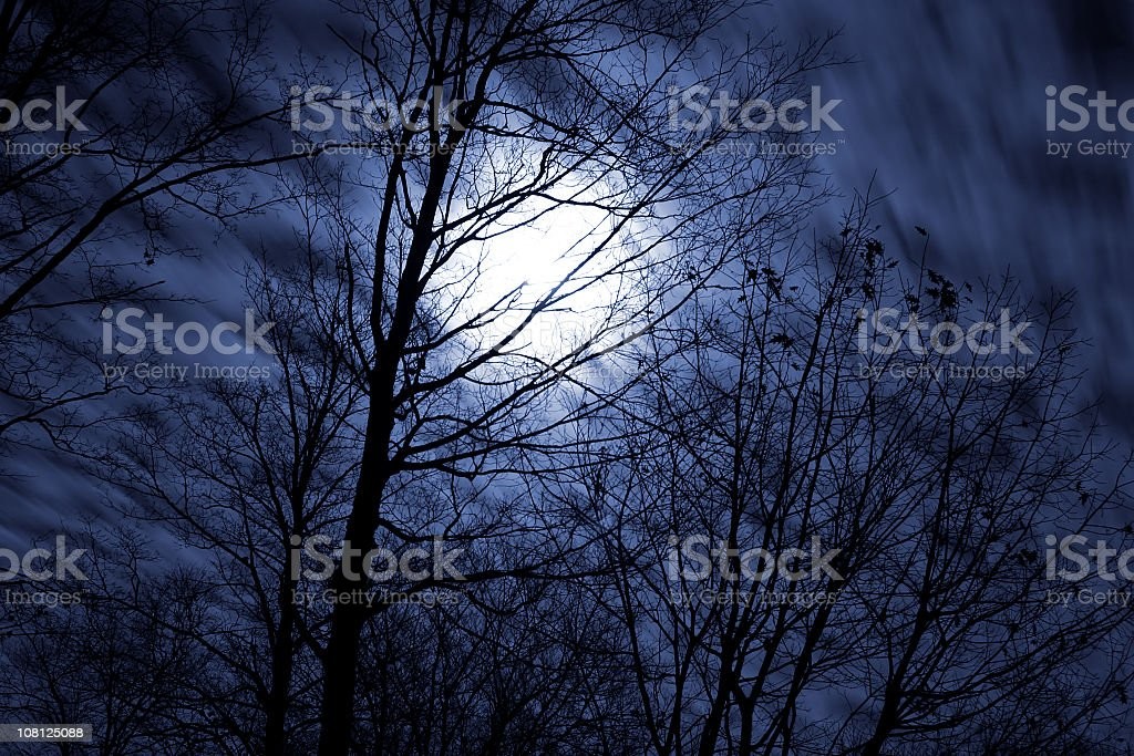 Full Moon at Night royalty-free stock photo